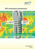 skysystem2011
